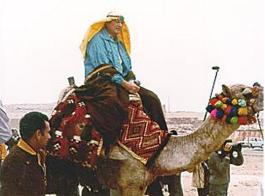 egypt1980